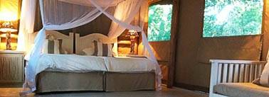Tartaruga Maritima - Luxury Tented Camp