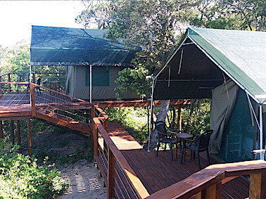 Luxury Tented Camp - image 4