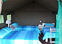 Luxury Tented Camp - image 1